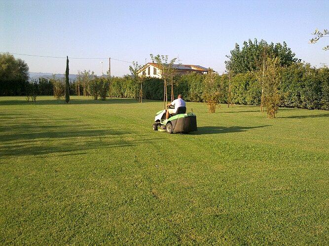 Manutenzione giardini eugenio ciandri giardinaggio for Prato manutenzione