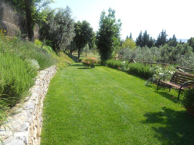 Realizzazione giardini eugenio ciandri giardinaggio for Gerani parigini cura